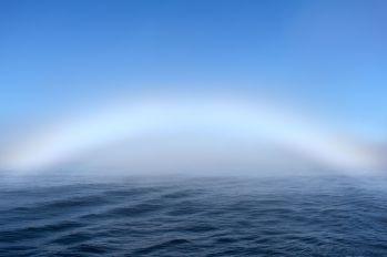 A fogbow on the Labrador Sea, near the coast of Nunatsiavut. Credit Samantha McBeth